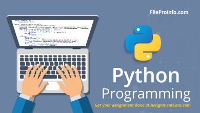 How to get a file extension in Python?